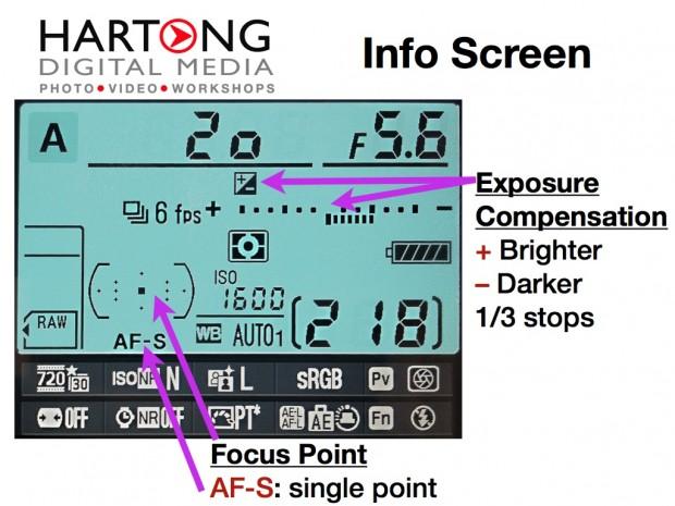 how to adjust camera brighter or darker