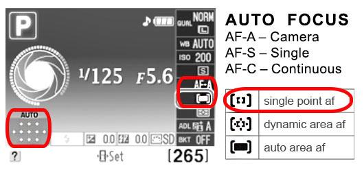Nikon Focus Tips