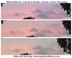 white-balance-hartong