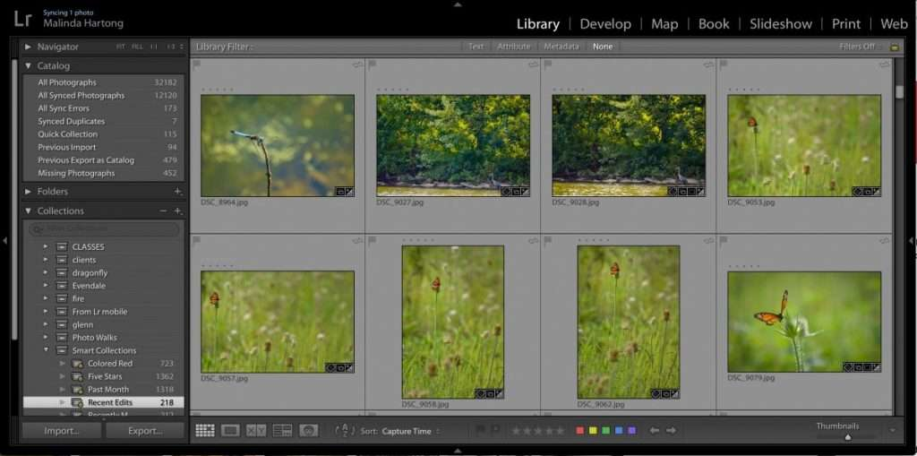 Lightroom Photoshop Photo Editing Lessons Classes Hartong